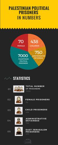 Political Prisoners Stats